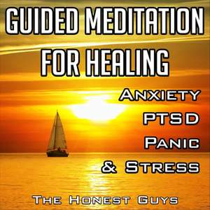 Guided Meditation for Healing Anxiety, PTSD, Panic & Stress