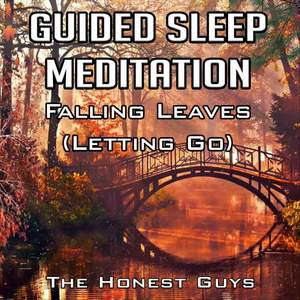 Guided Sleep Meditation: Falling Leaves (Letting Go)