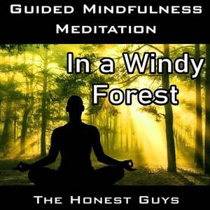 Guided Mindfulness Meditation in a Windy Forest