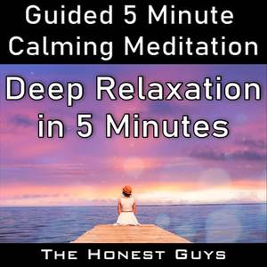 Deep Relaxation in 5 Minutes (Guided 5 Minute Calming Meditation)