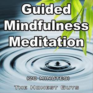 Guided Mindfulness Meditation (20 Minutes)